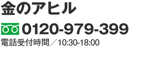 0120-979-399